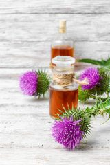 Glass vial with therapeutic drug of the flowering milk Thistle